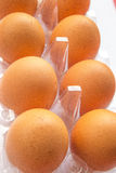 Ägg på en plast- ask Arkivfoto