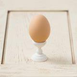 Ägg på en stand Arkivbild