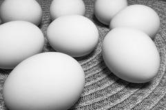 Ägg på en tabell Arkivbilder