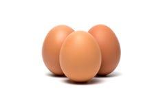 Ägg på en vit bakgrund Arkivfoton