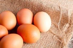 Ägg på ett plundra slut upp Arkivfoto