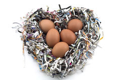 Ägg på ett tidningsskydd (hjärta Shape) Arkivbild