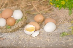 Ägg på ett trä bordlägger Arkivbilder
