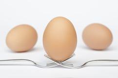 Ägg på gafflarna och den vita bakgrunden Arkivfoto