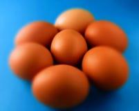 Ägg på litet suddiga blått royaltyfri fotografi
