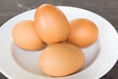 Ägg på maträtt Arkivfoto