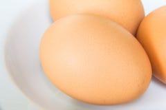 Ägg på maträtt Arkivbilder