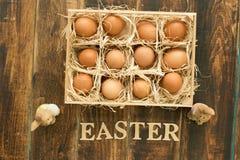 Ägg på sugrör som förläggas med rolig kanin två till easter garnering Arkivfoton