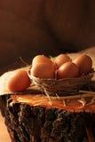 Ägg på trä fotografering för bildbyråer