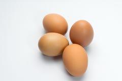 Ägg på vitbakgrund Arkivbilder