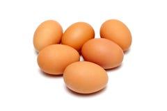 ägg sex Arkivfoto