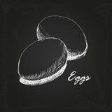 Ägg skissar 1 Arkivfoto