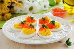 Ägg som är välfyllda med krämig mousse Arkivbild