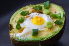 Ägg som bakas i avokado Fotografering för Bildbyråer