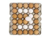 Ägg som bildar nummer tre Arkivfoton