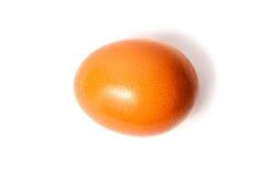Ägg som isoleras på den vita bakgrunden Arkivbilder