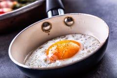 Ägg stekt ägg Fegt ägg Stäng sig upp sikt av det stekte ägget på en stekpanna Rimmat och kryddat stekt ägg Arkivfoton