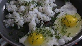 ägg stekt rice stock video