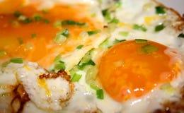 ägg stekt soligt övre för sida Arkivbild