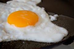 ägg stekt stekpanna Fotografering för Bildbyråer