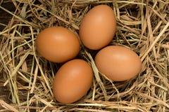 Ägg sugrör På trä Fotografering för Bildbyråer