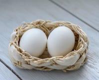 ägg två Fotografering för Bildbyråer