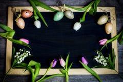 Ägg undersöker för easter Arkivfoto