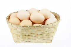 Ägget arkivfoton