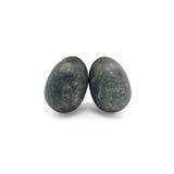 Äggformad sten Arkivfoton