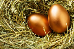 äggguld Fotografering för Bildbyråer