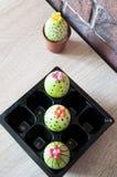 Äggjakt matlagning Ovanlig idé lyckliga easter Naturlig färg gjord easter äggbild grön livstid blommaillustrationen shoppar smell fotografering för bildbyråer