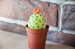 Äggjakt matlagning Ovanlig idé Vårplantor växthus Blomma för kaktus gjord easter äggbild grön livstid blommaillustrationen shoppa royaltyfria bilder