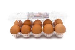 Äggmagasin Royaltyfri Bild