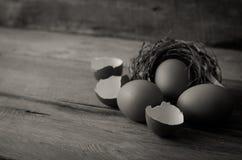 Äggskal och ägg på det trä - stilleben Royaltyfri Fotografi