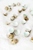 Äggskal och vaktelägg på skrynkligt papper på vit bakgrund Royaltyfria Bilder