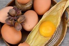 Äggula och äggviteämne Ägg på en keramisk bunke, hasselnöt Arkivbilder