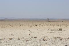 In Ägypten an der Sonnenuntergang Sandwüste Lizenzfreie Stockfotos