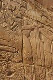 Ägyptische Carvings Lizenzfreies Stockfoto