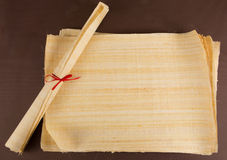 Ägyptische Papyrusbeschaffenheit Stockfotos