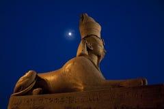 Ägyptische Sphinx und Mond in St Petersburg Stockbilder