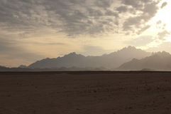 Ägyptische Wüste stockfoto