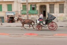 Ägyptischer Cabman in der Alexandria-Stadt Stockfoto