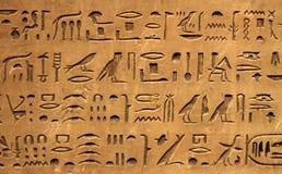 Ägyptisches hyeroglyphics Stockbilder