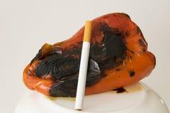 Ähnlicher Schaden der Lungen Stockfotos