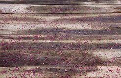 Äkta wood bakgrund med röda små stycken av exponeringsglas, tapet Arkivbild