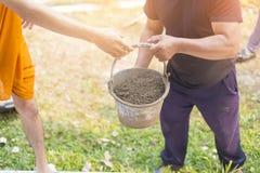 Äldre arbete eller arbetare som bär konstruktionssand för blandning med cement och bygger hus Arkivfoto