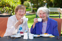 Äldre bästa vän med kaffe på den utomhus- tabellen arkivfoto