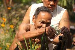 Äldre badningBuddha i den songkranThailand festivalen Arkivfoto