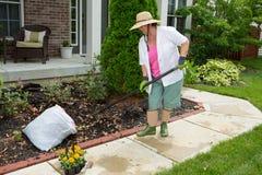 Äldre dam som gör lokalvårdarbete i gården Royaltyfri Bild