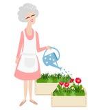 Äldre farmor som bevattnar henne växter royaltyfri illustrationer